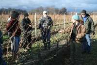 December Pruning Workshop