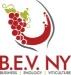 B.E.V. NY 2018